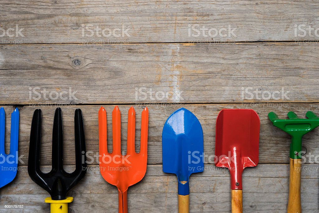 Gardening tools on wood table stock photo