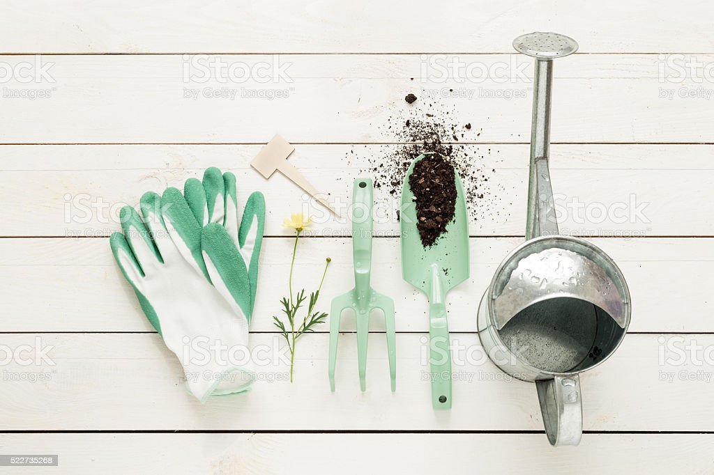 Gardening tools, watering can and gloves on white wood stock photo