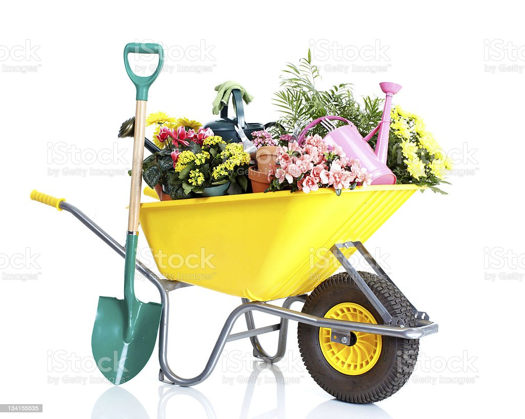 Gardening wheelbarrow filled with flowers and tools stock photo