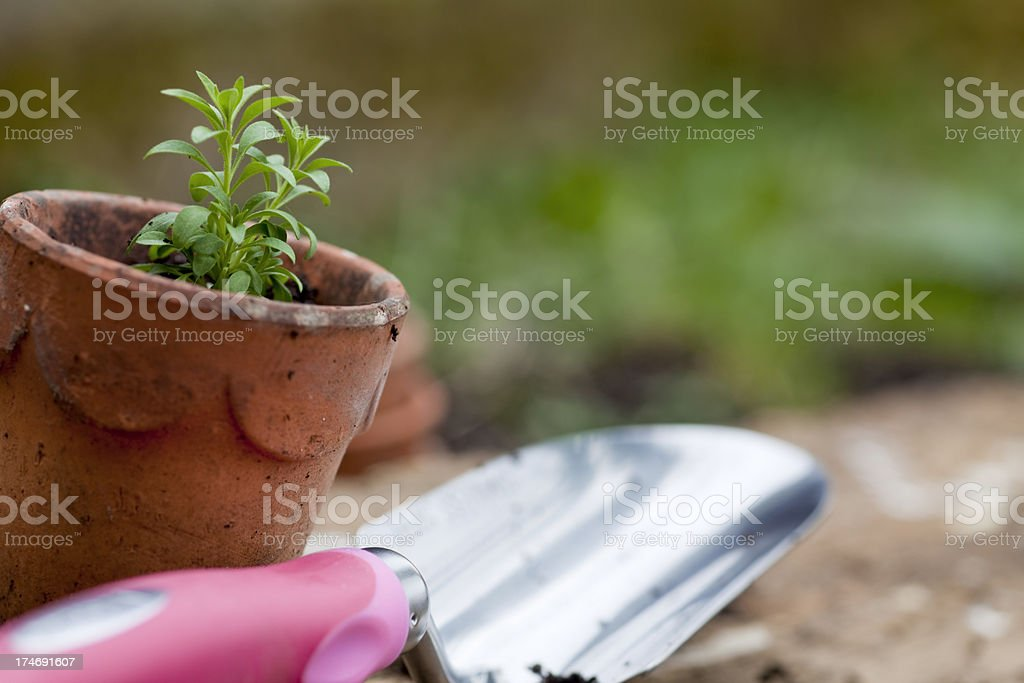 Gardening with Terracotta Pot and Trowel royalty-free stock photo