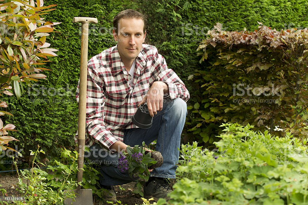 Gardening, working in the garden stock photo
