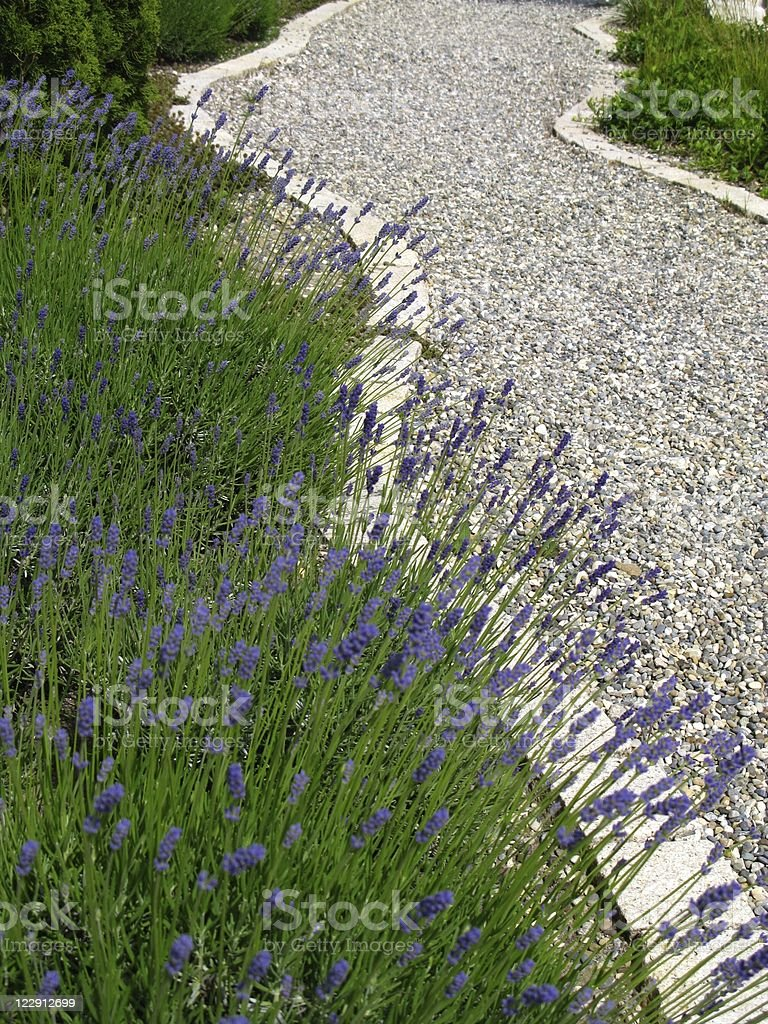 Garden-path royalty-free stock photo