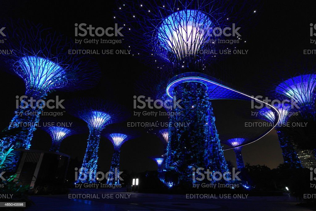 Gardens by the Bay in Singapore at night stock photo