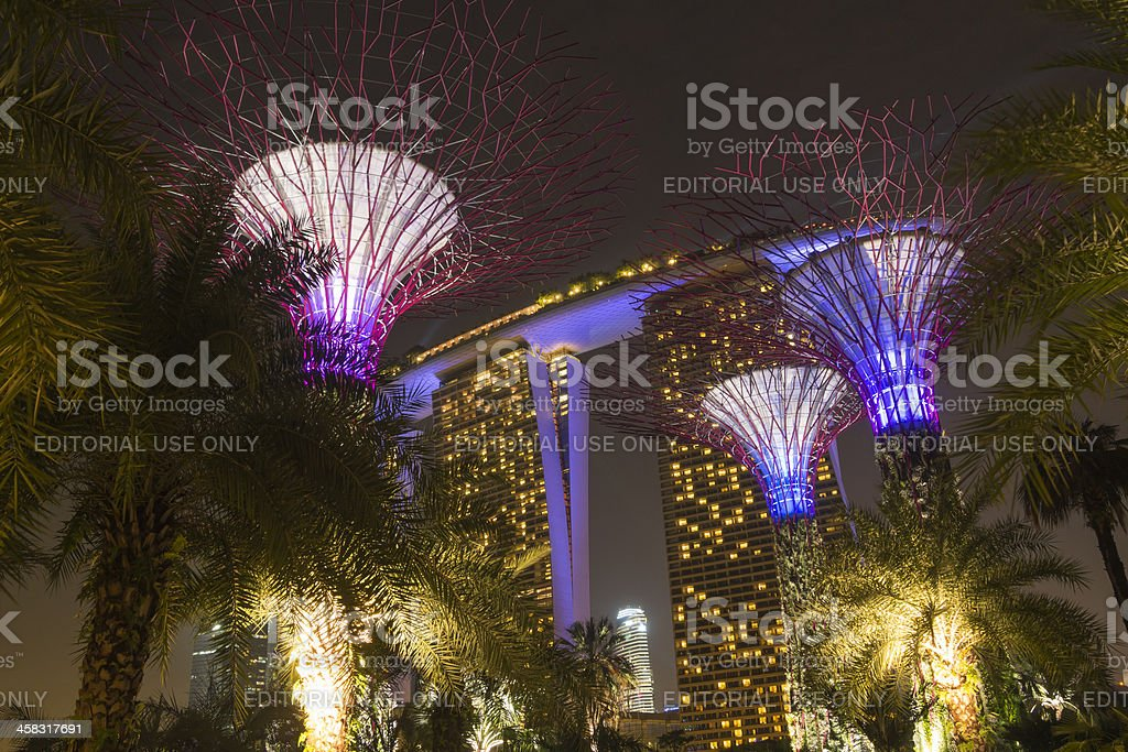 Gardens by the bay royalty-free stock photo