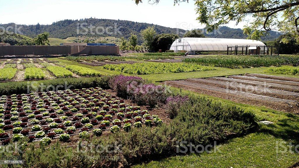 Gardens French Laundry Historic House Yountville Napa Valley California stock photo