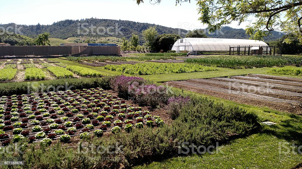 Gardens French Laundry Historic House Yountville Napa Valley California stock photo