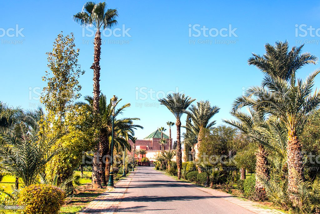 Gardens of the Royal palace in Marrakesh, Morocco stock photo