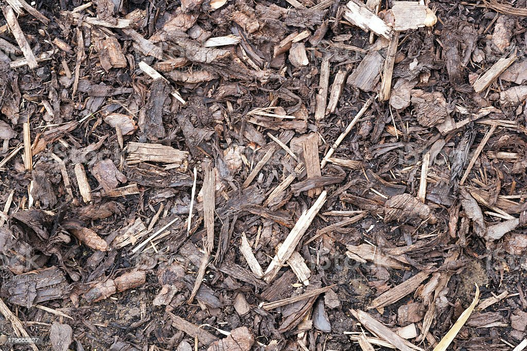 Gardens texture - landscaping bark chippings royalty-free stock photo