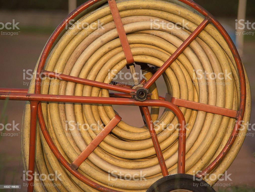 gardning hose in sunset royalty-free stock photo