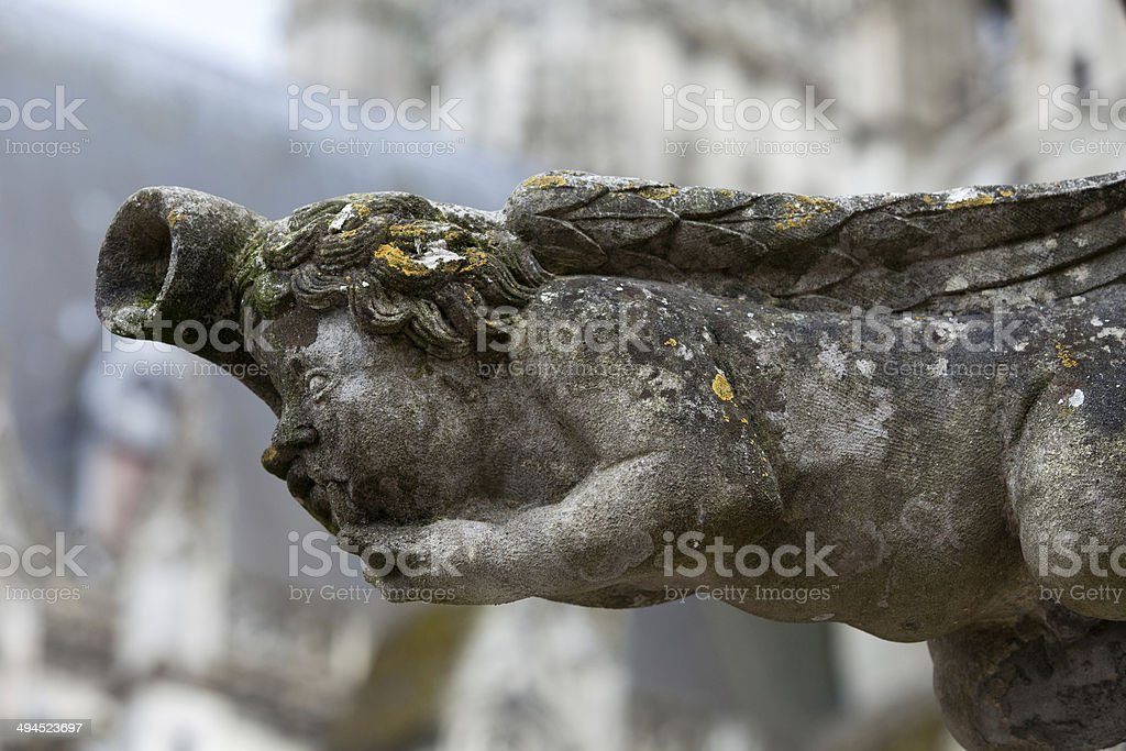 Gargoyle on Gothic cathedral of Saint Gatien in Tours stock photo