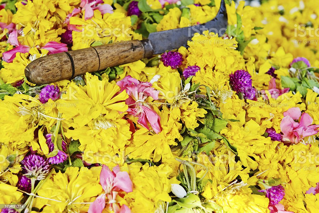 Garland of  flowers royalty-free stock photo