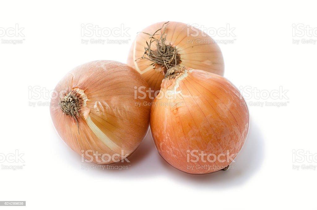 Garlic and onion royalty-free stock photo
