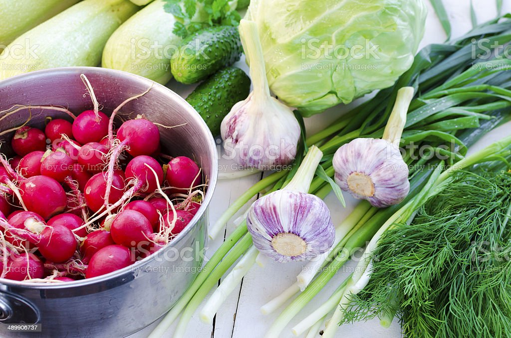 Garlic and other spring vegetables royalty-free stock photo