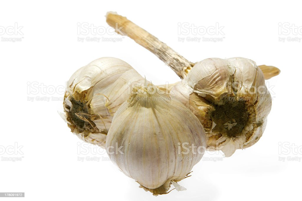 garlic bulb isolated on white background royalty-free stock photo