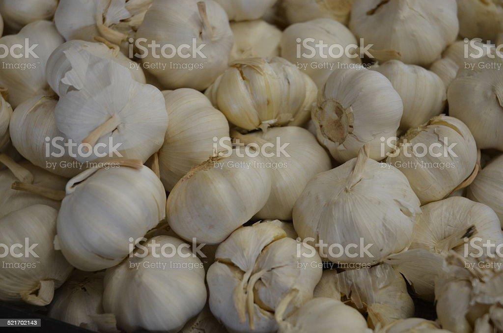 Garlic Heads royalty-free stock photo