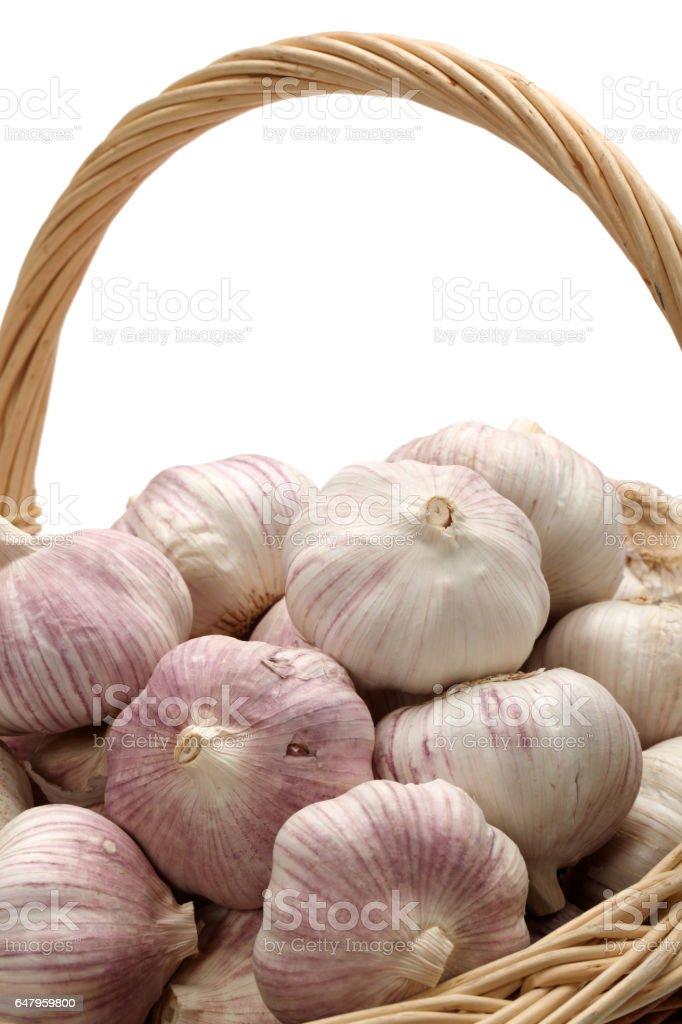 Garlic  isolated  on White Background stock photo