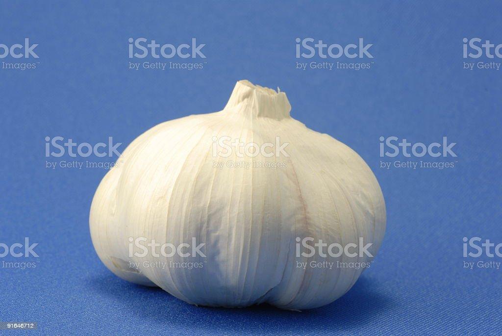Garlic on blue stock photo
