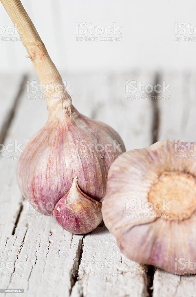 Garlic vegetable stock photo