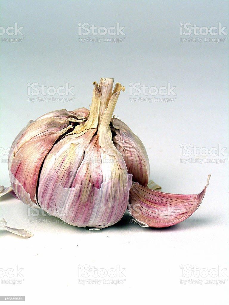 Garlic2 stock photo
