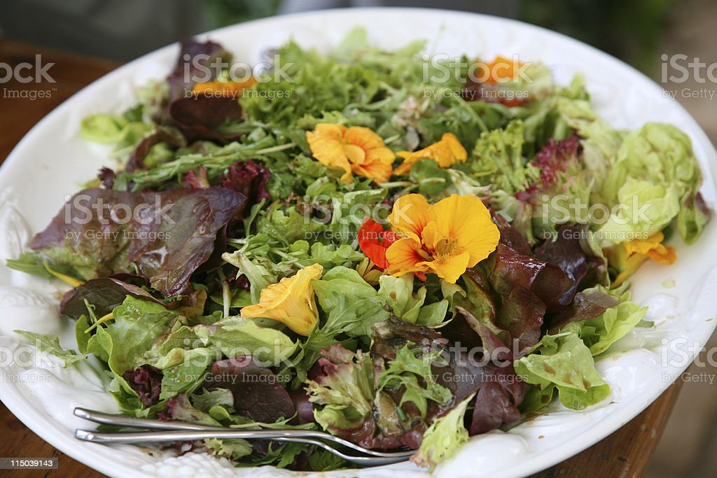 Garnished Salad royalty-free stock photo