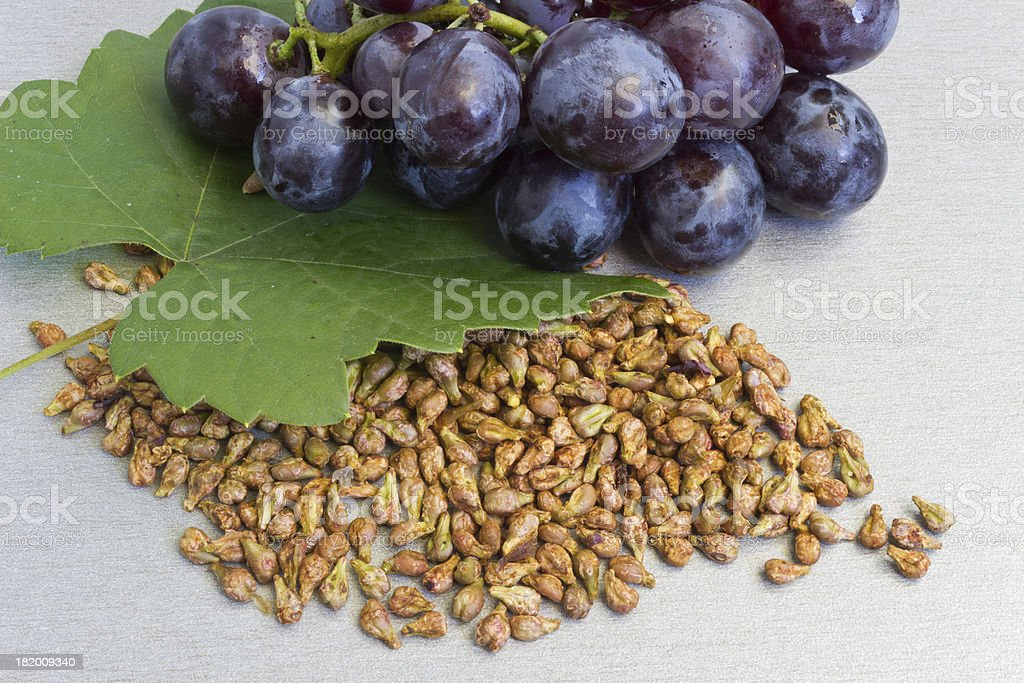Garpe seed stock photo