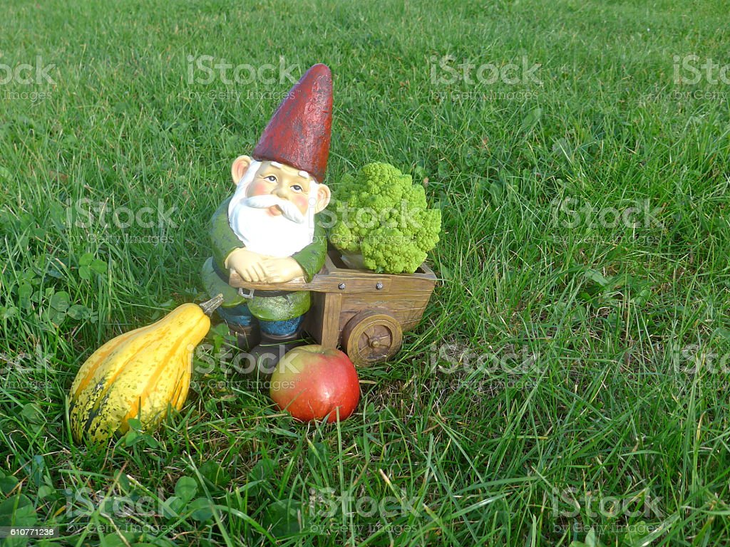 Gartenzwerg mit Schubkarre, Broccoli, Kürbis und Apfel stock photo