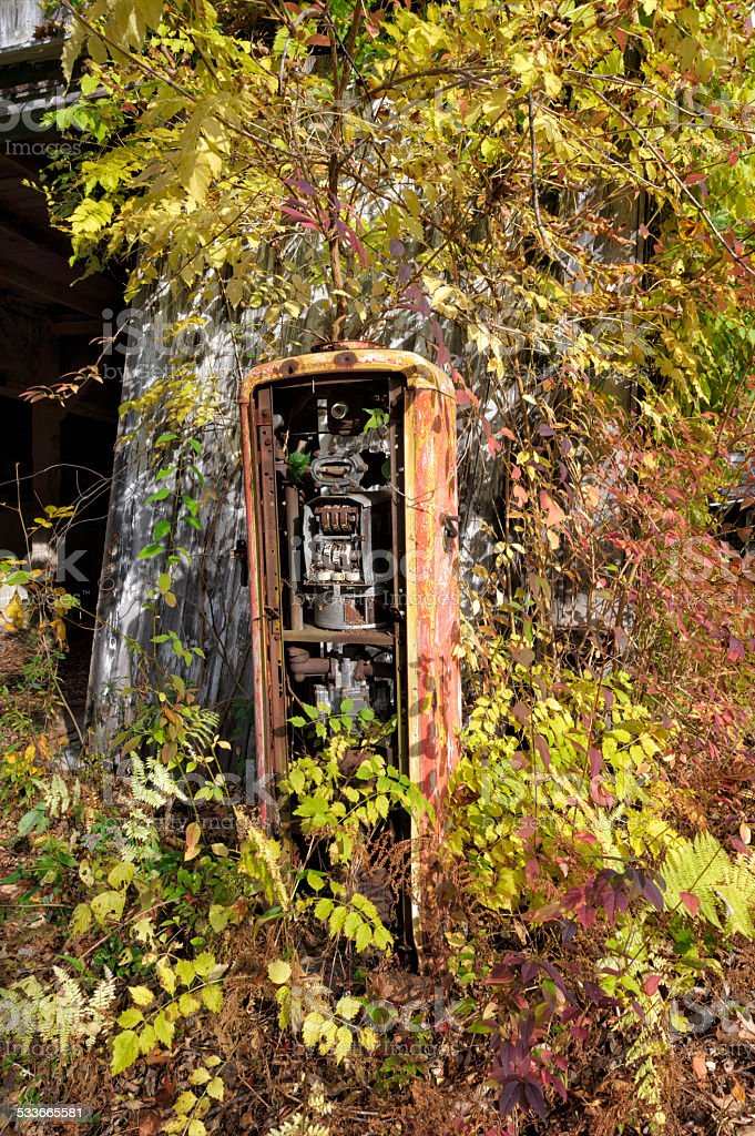 Gas Pump Abandoned and Overgrown in Fall Leaves stock photo