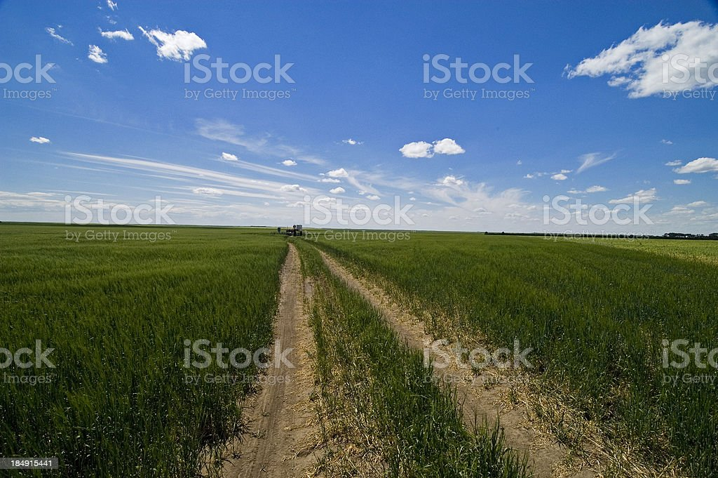Gas road royalty-free stock photo