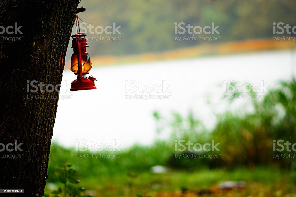 Gasoline lamp hanging of a tree in the rain stock photo