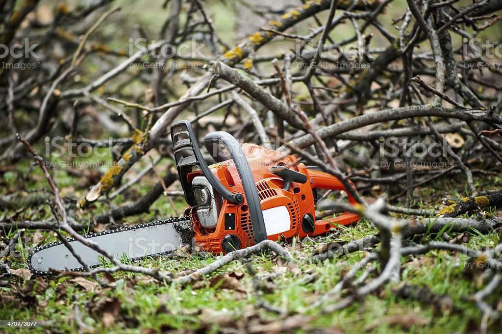Gasoline professional chainsaw cutting branches against wood bac stock photo