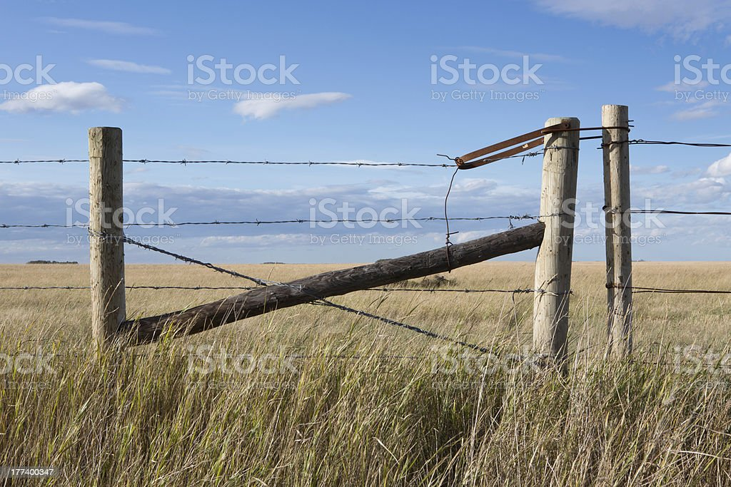 Gate on barbed wire fence with yellow praire grass pasture royalty-free stock photo