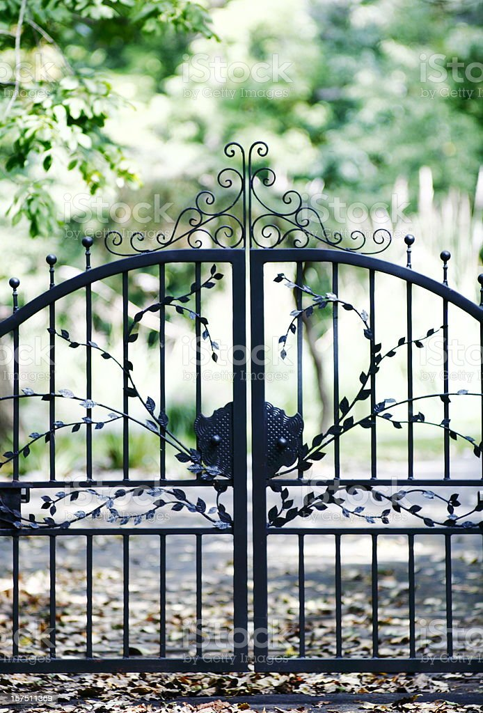 Gate with a leafy design enclosing a space stock photo