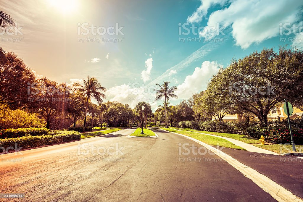 Gated community road in tropics, light leaks stock photo