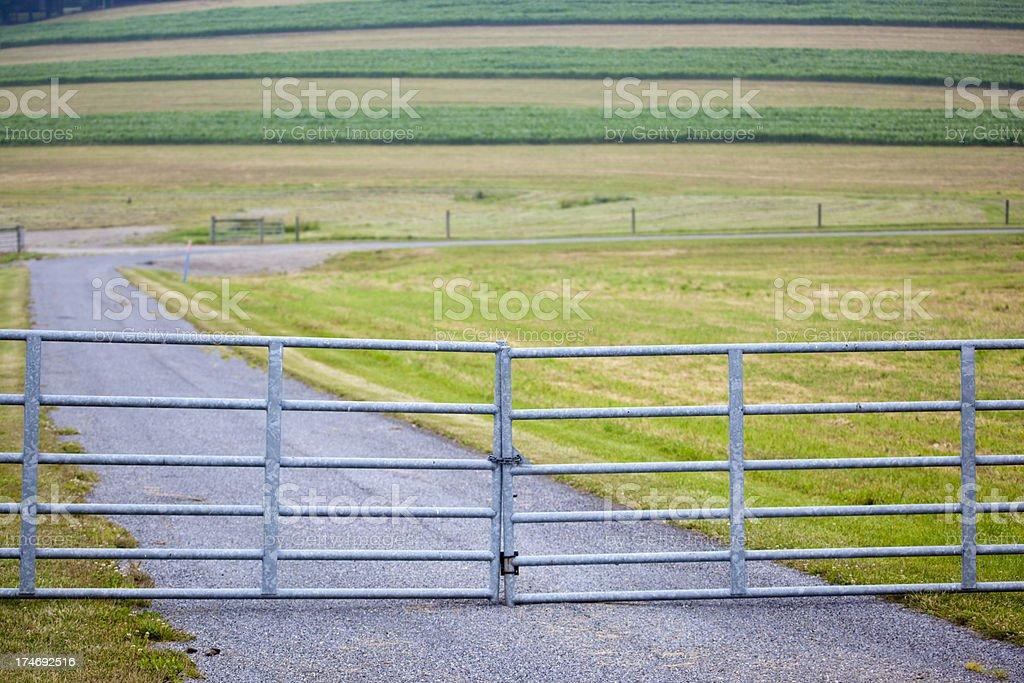 gated road to summer farm corn field stock photo