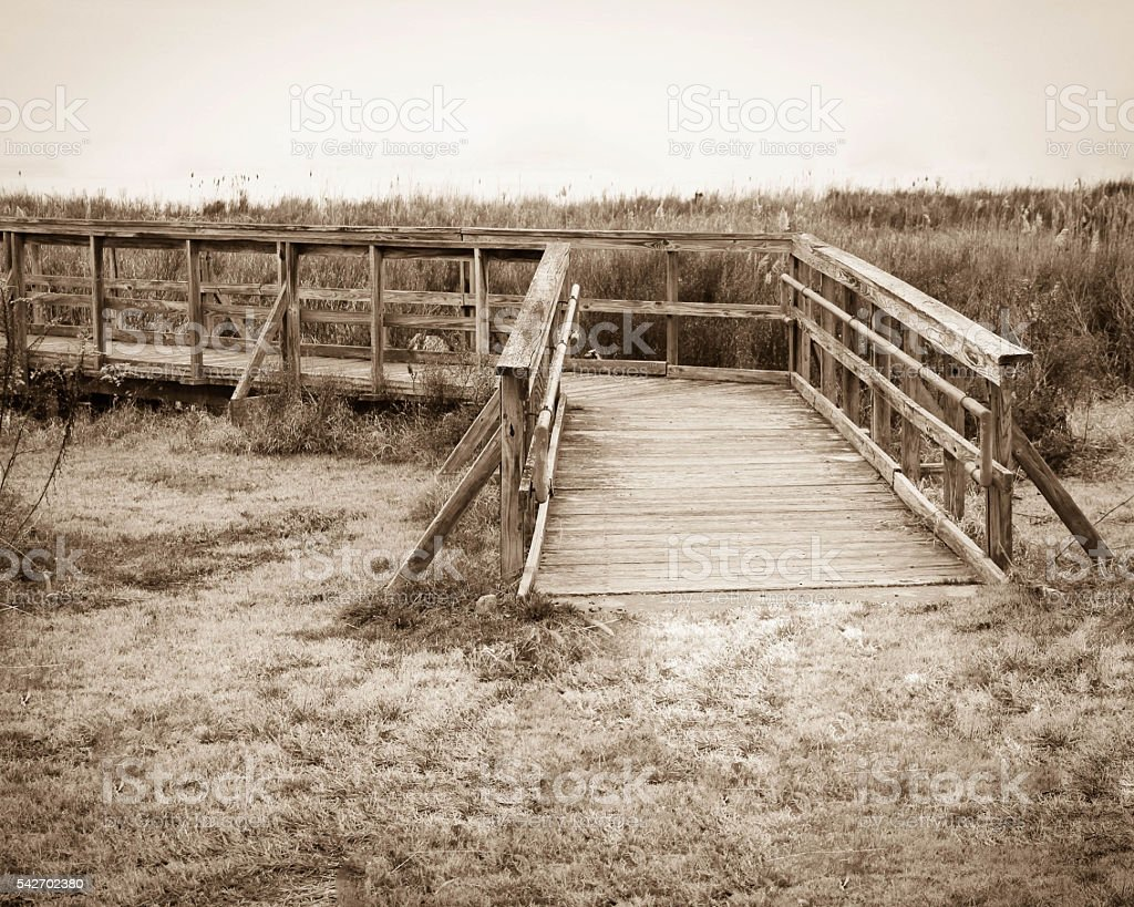 Gateway to the wetlands stock photo