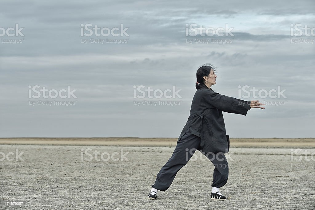 Gathering Energy In Qi Gong royalty-free stock photo