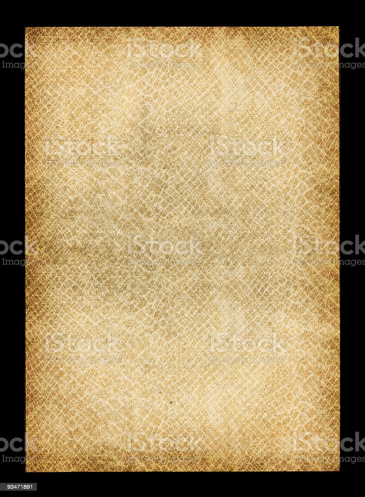 Gator Texture Paper royalty-free stock photo