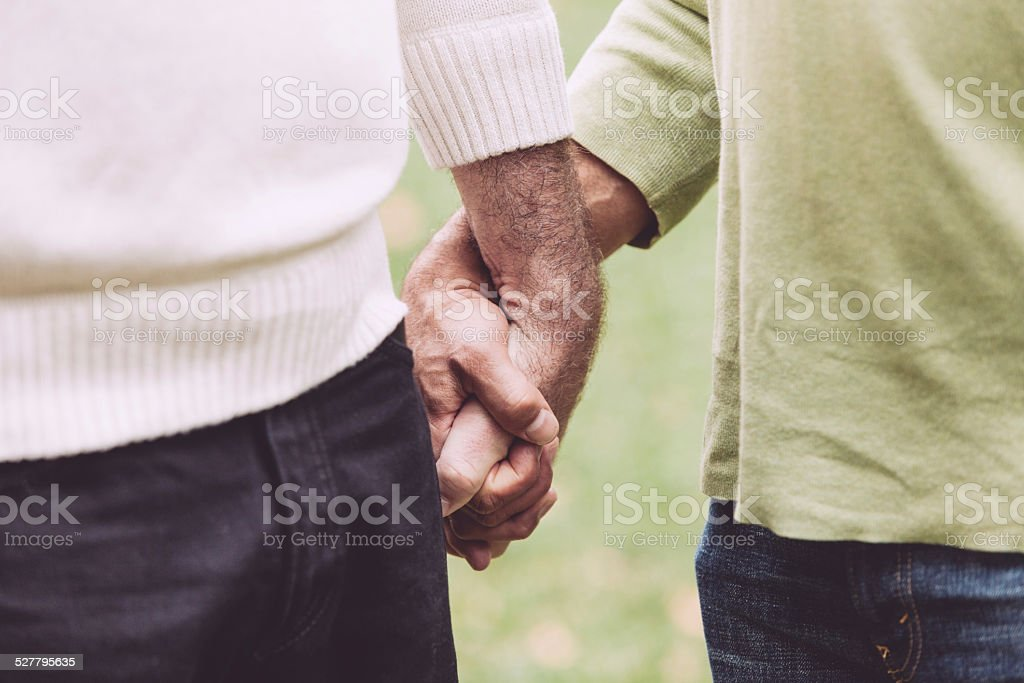 Gay Couple Holding Hands at Park stock photo