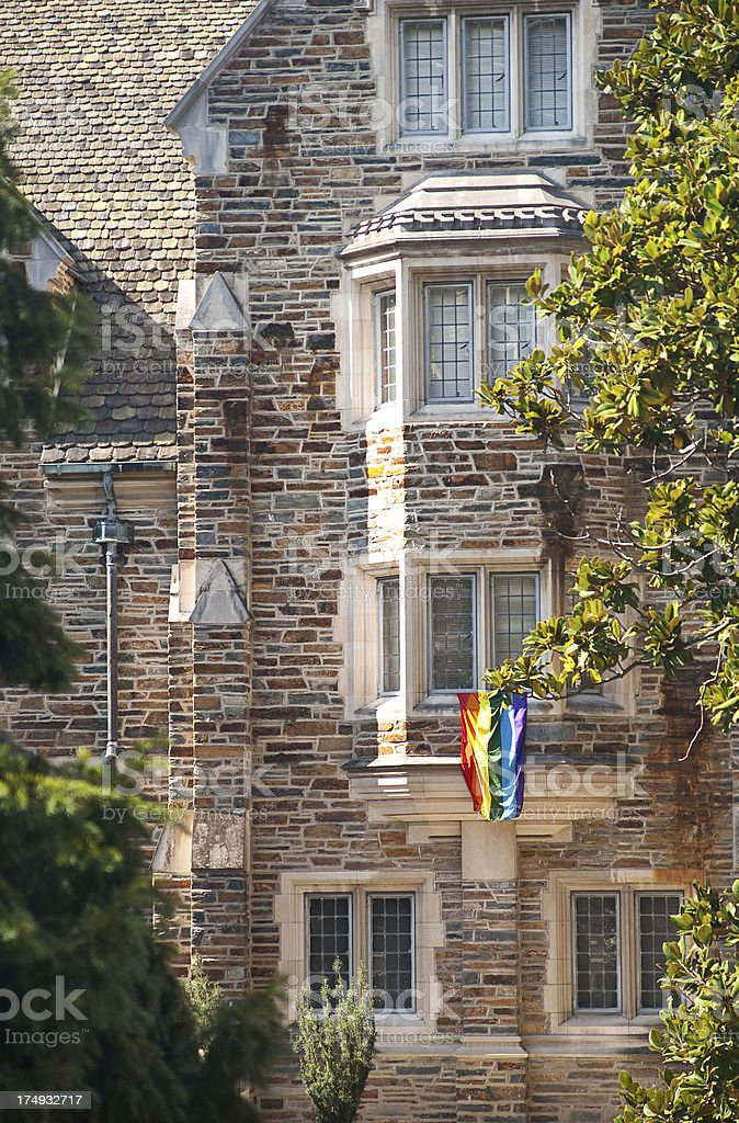 Gay Pride On Campus royalty-free stock photo