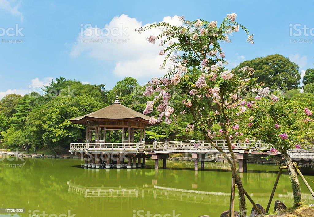 Gazebo in Nara stock photo