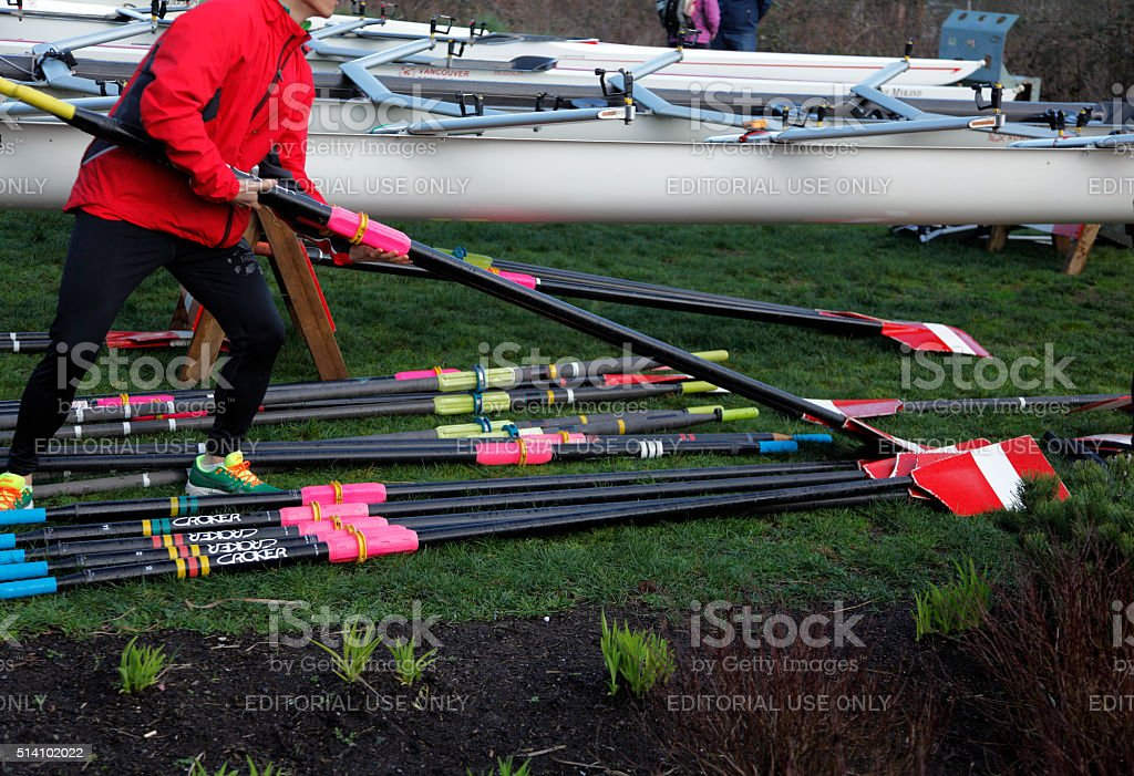 Gearing Up The Oars For The Regatta stock photo