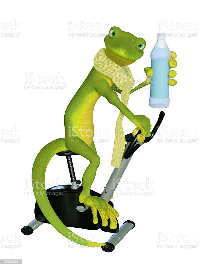 Gecko cardio training stock photo