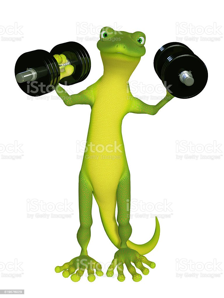 Gecko with a dumbbell stock photo