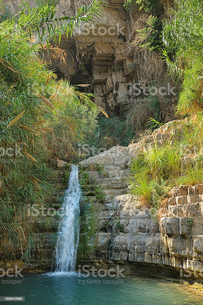 Ein Gedi Nature Reserve royalty-free stock photo