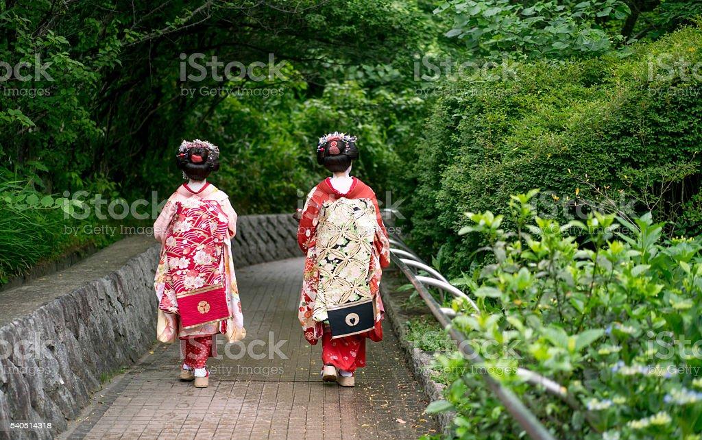 Geishas walking outdoors wearing kimonos stock photo