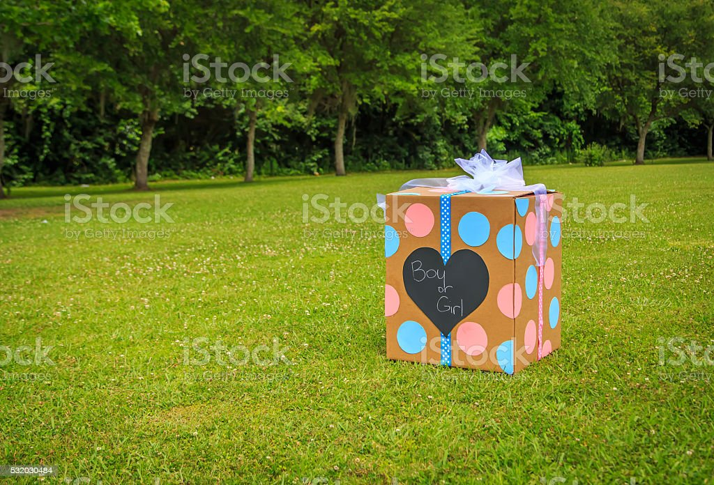Gender Reveal Balloon Box stock photo