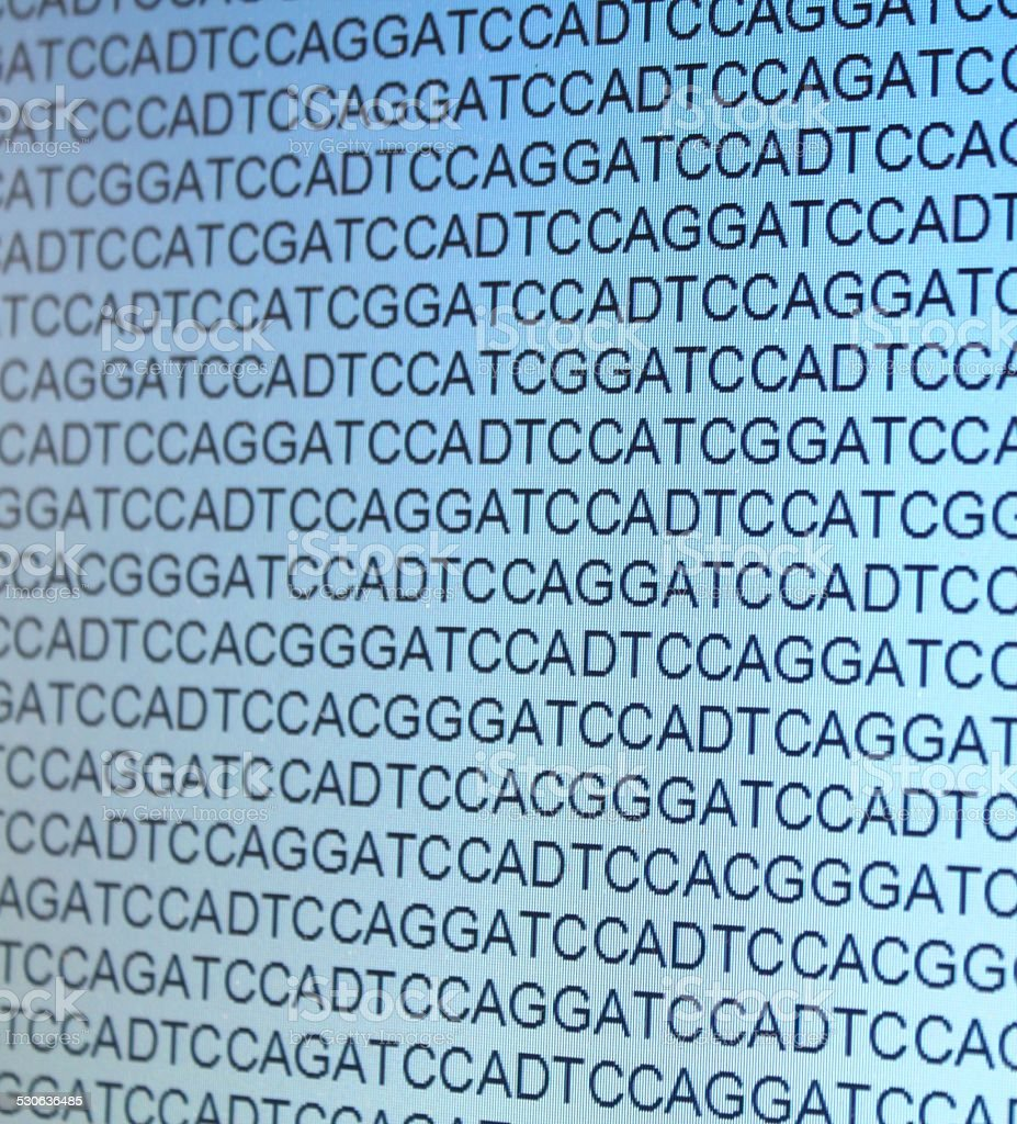 gene sequence on a monitor stock photo