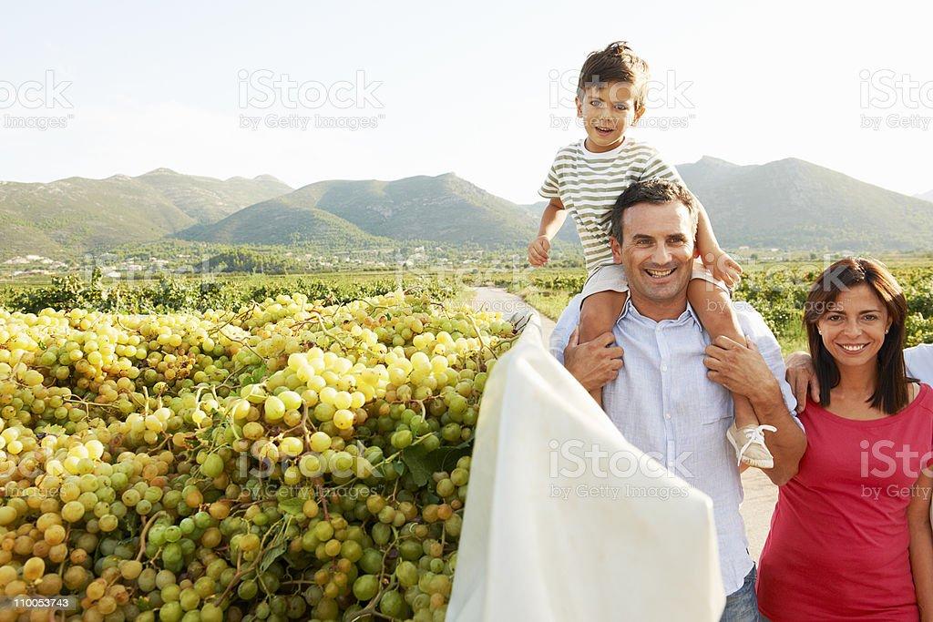 Generational family walking in vineyard stock photo