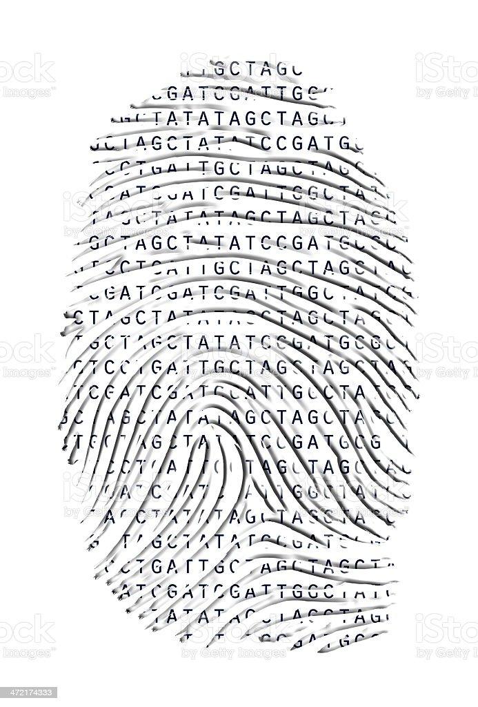 Genetic Fingerprint stock photo
