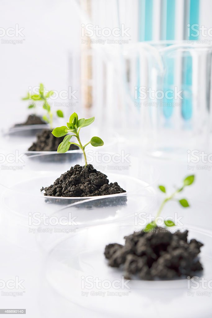 Genetic research stock photo
